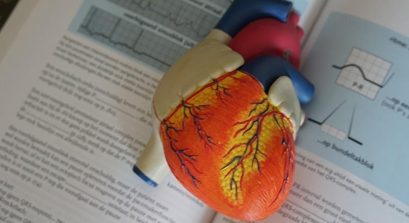 Adopt a simple and affordable lifestyle to prevent heart attacks