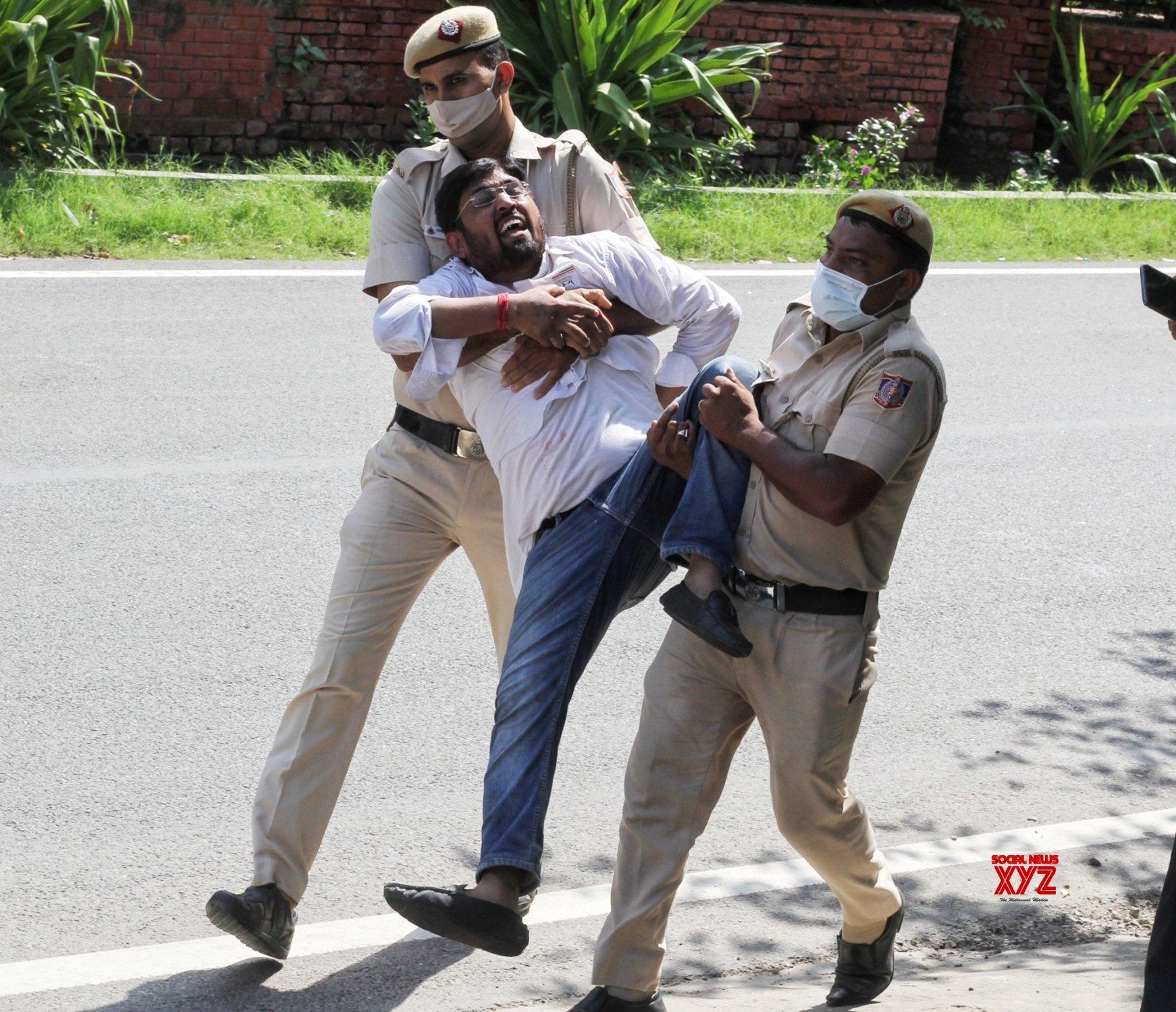 :Delhi police personnel detain a Youth Congress activist - protesting against Sunday's killing of four farmers in Uttar Pradesh Lakhimpur Kheri #Gallery