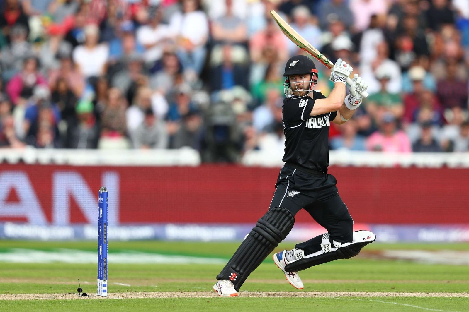 T20 World Cup: Hamstring is fine but elbow needs time, says NZ captain Williamson