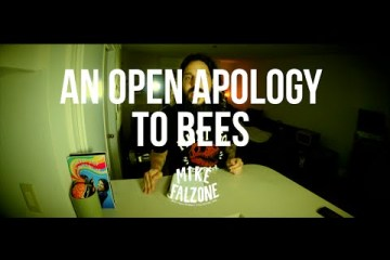 An-Open-Apology-To-Bees