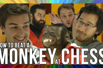 How-To-Beat-A-Monkey-At-Chess-THE-MUSICAL-feat.-MatPat-The-Completionist-Random-Encounters