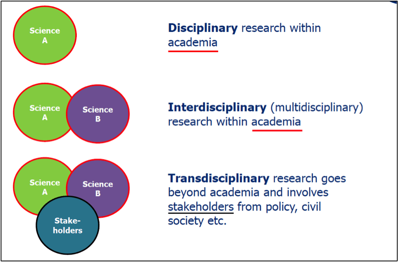 Multidisciplinary vs. Interdisciplinary Teamwork: Becoming a More Effective Practitioner