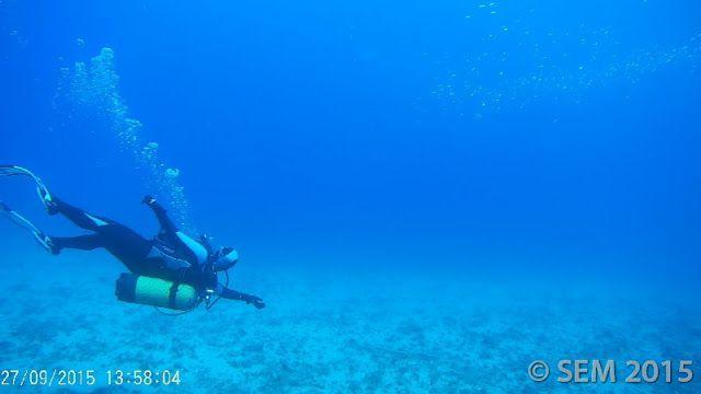 Inmersión Corales Naranjas – Punta de la Mona, 27 septiembre 2015, fotos y crónica.
