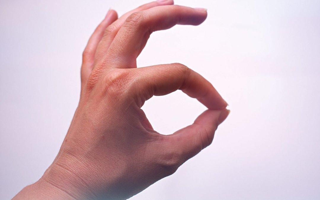 Langue des signes française (LSF), langue des signes internationale (LSI) et transcription Instantanée de la Parole (TIP) : Évolutions en perspective …