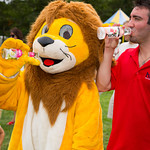 Lion Drinking hint water