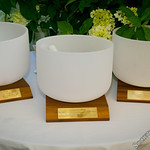 Singing Bowls Awarded to Kim Cattrall, Kathie Lee Gifford, and Hoda Kotb