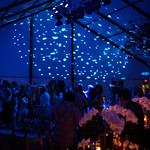 Parrish-Art-Museum-Midsummer-Party-Southampton-NY-Society In Focus-Event Photography-20120714235446-_L1A0282-257