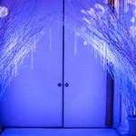 Ballroom Entrance
