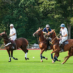 Polo at the Park