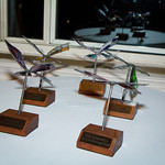 NMA Butterfly Awards