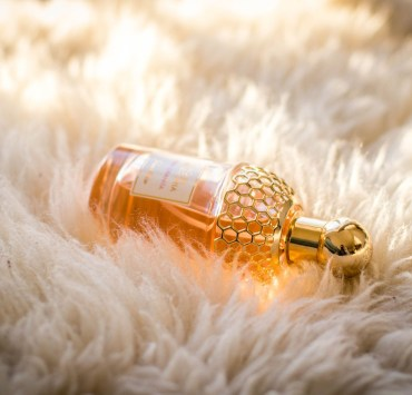 We've put together a list of our favourite fragrances for each season! All of these prefumes will leave you smelling fresh regardless of the time of year!