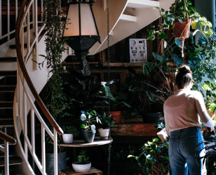 Going eco-friendly doesn't mean you should give up on style. Check out these handy products that look stylish in your home and help save the planet too!