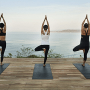 Look no further then here, for the yoga spots near Manchester article covers all aspects any yogi can be thinking of when wanting a new location!