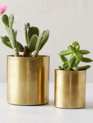 What You'll Need in Your First Apartment: UO mod detal small planter