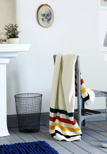 What You'll Need in Your First Apartment: Uo pendelton glacier park towel