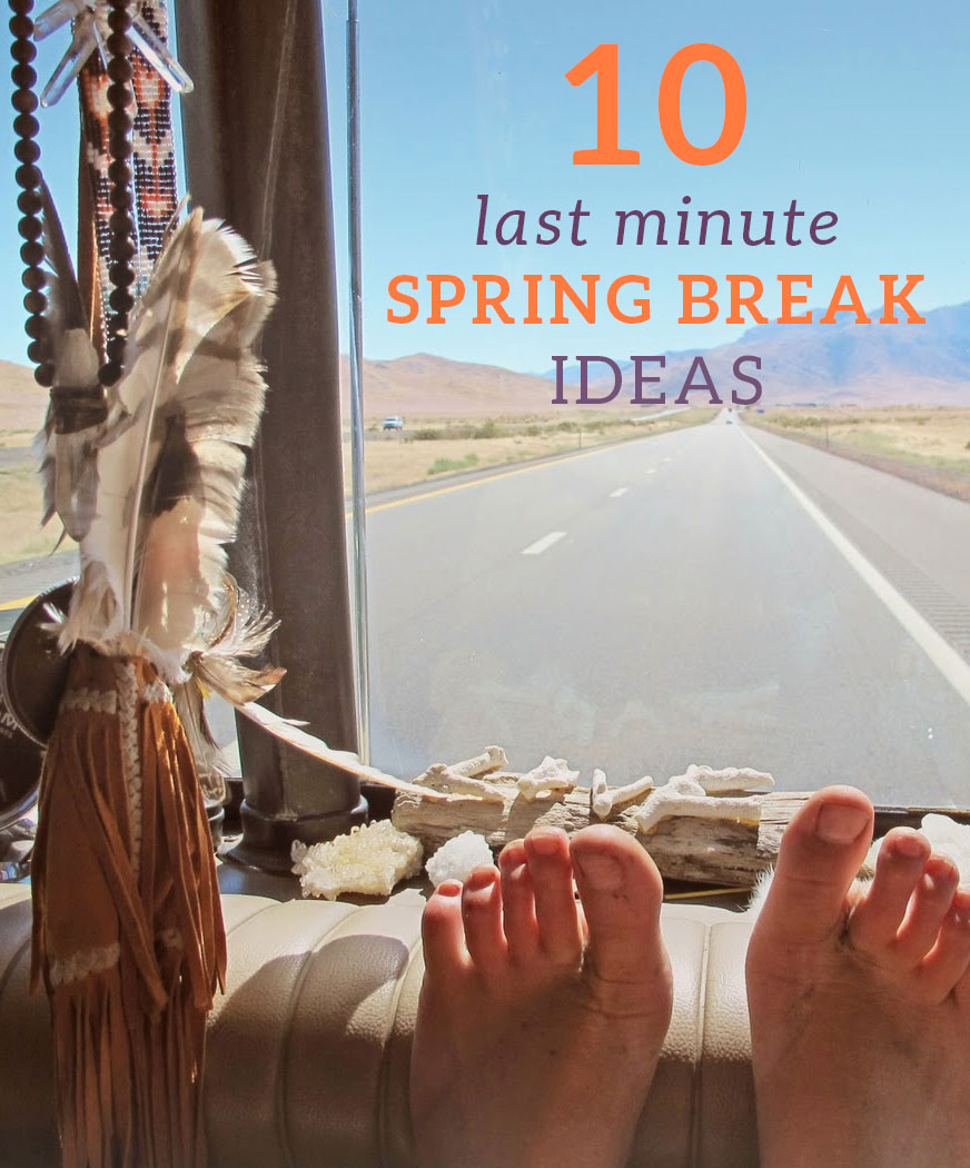 Here are some last minute spring break ideas!