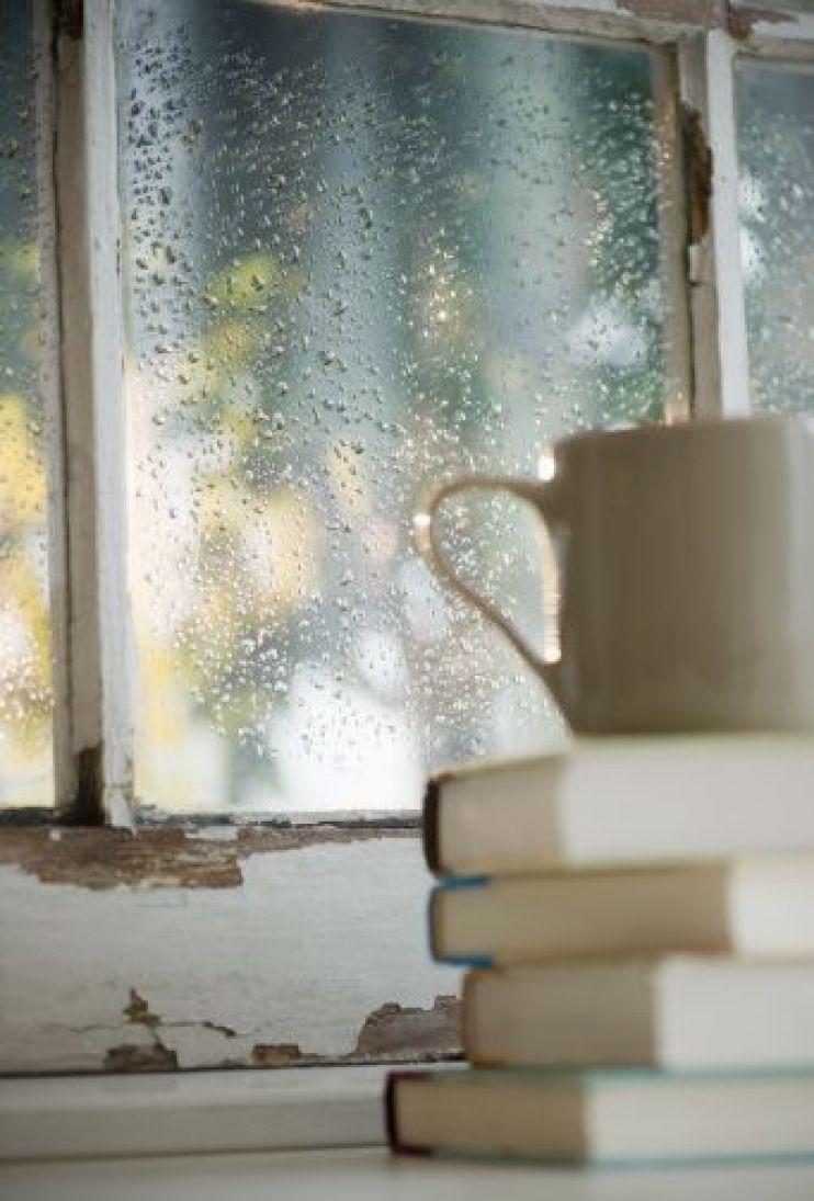 cozy rainy day set up
