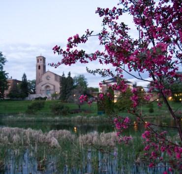 12 Things I Wish I Knew Before Orientation At St. Catherine University
