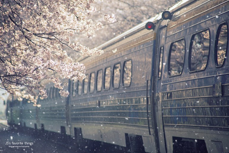 cool train picture