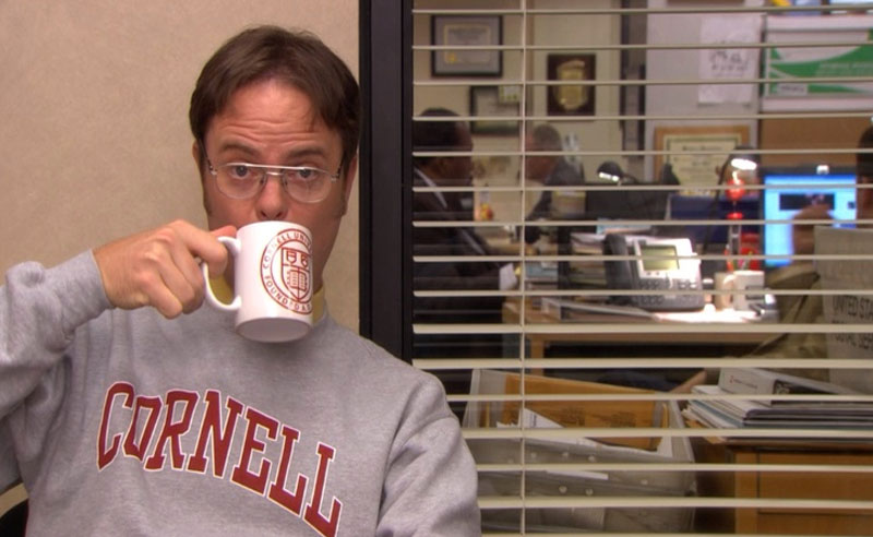 Times The Office Described Senior Year, 11 Times The Office Described Senior Year
