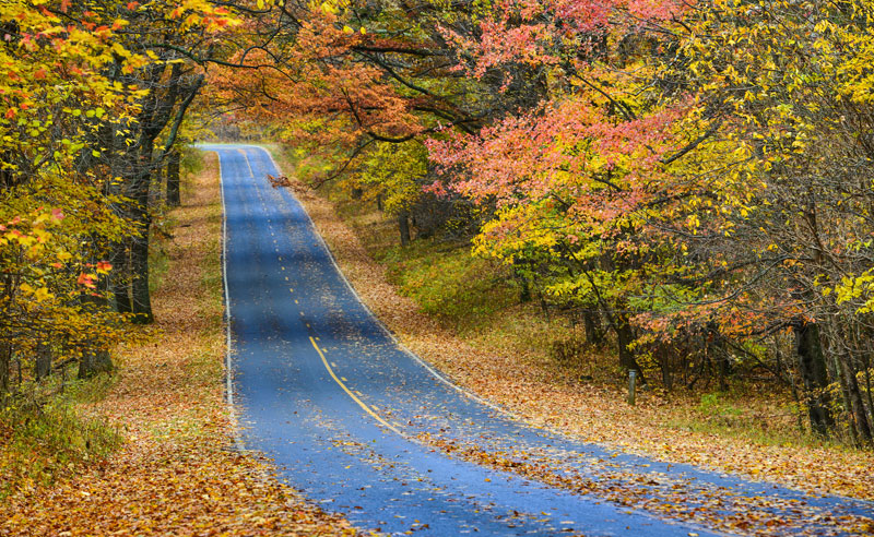 Check out some awesome places to visit that make for the perfect fall road trips in Indiana. From sightseeing to museums, you're sure to have a great fall!