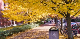 Summer has passed and classes are already flying by. Below is a list of all the reasons we should get excited for fall at UO!