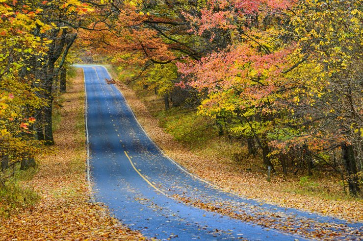 Whether you're afreshman or a senior that's about to graduate, don't you dare overlook these great potential fall road trips to take around Temple!