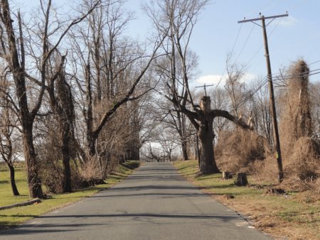 6 Haunted Places In New Jersey You Need To Visit