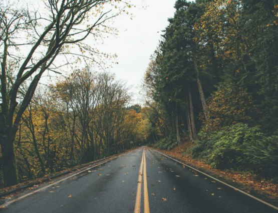 Take advantage of any free time you may have and plan a fun road trip around campus at UNH. Keep reading for 5 fall road trips to take around UNH!