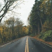 Go grab your friends, jump in the car, and prepare to venture out on one of thesefall road trips to take around Gainesville!
