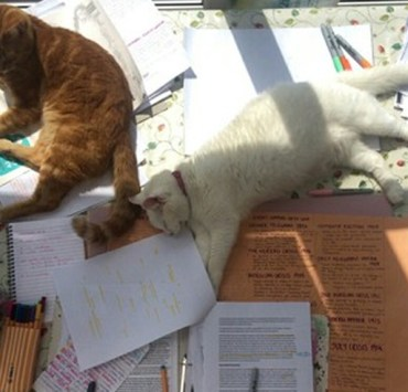 20 Pictures Of College Students Who Couldn't Even Deal With Finals