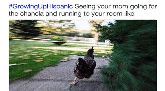 If you grew up in a Hispanic household, you know it is nothing like the movies. These are the relateable signs you were raised in a Hispanic household.