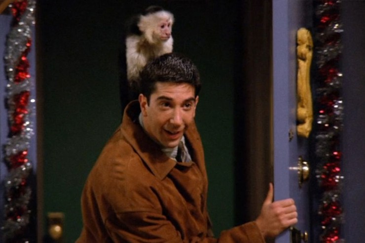 Everyone has a favorite from the tv show Friends,whether it's Ross, Rachel, Monica, Phoebe, Chandler or Joey.But this is why Ross from Friends was the best!