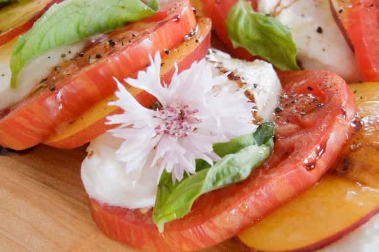 vegetarian blogs, 6 Hip AF Vegetarian Blogs To Follow Right Now