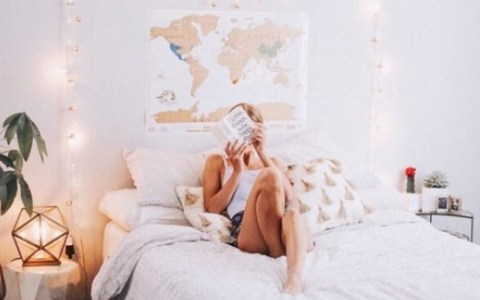 If you go or are about to go to MSU, read this list of the good and bad dorms at Michigan State University to help you choose the right housing for you.