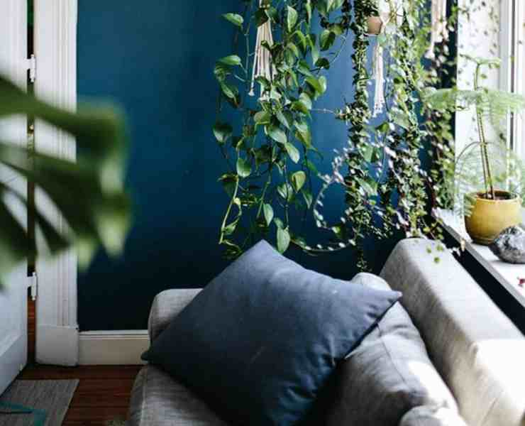 There are 3 major principles that fit into the concept of Feng Shui: chi (energy), the Five Elements, and the Bagua (a chart used to keep track of the objects in your home). So let's get started on giving your life more harmony with these Feng Shui tips.