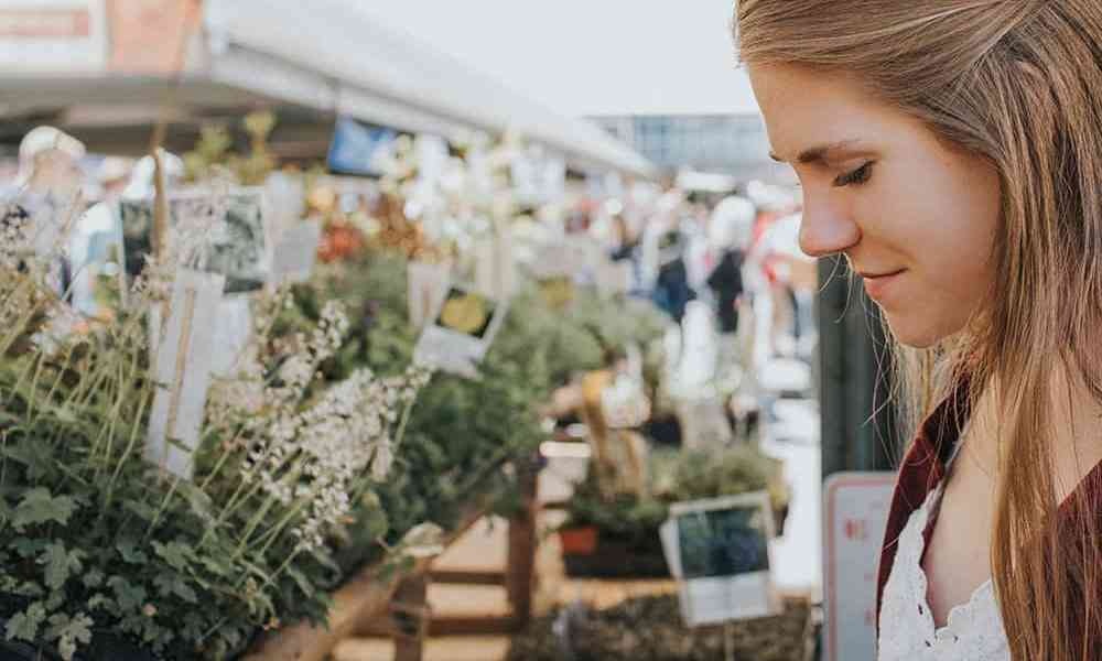 Finding the freshest foods can be a challenge. Let us help! Here are the best Farmers Markets in Houston for all your greenery and artisinal needs.