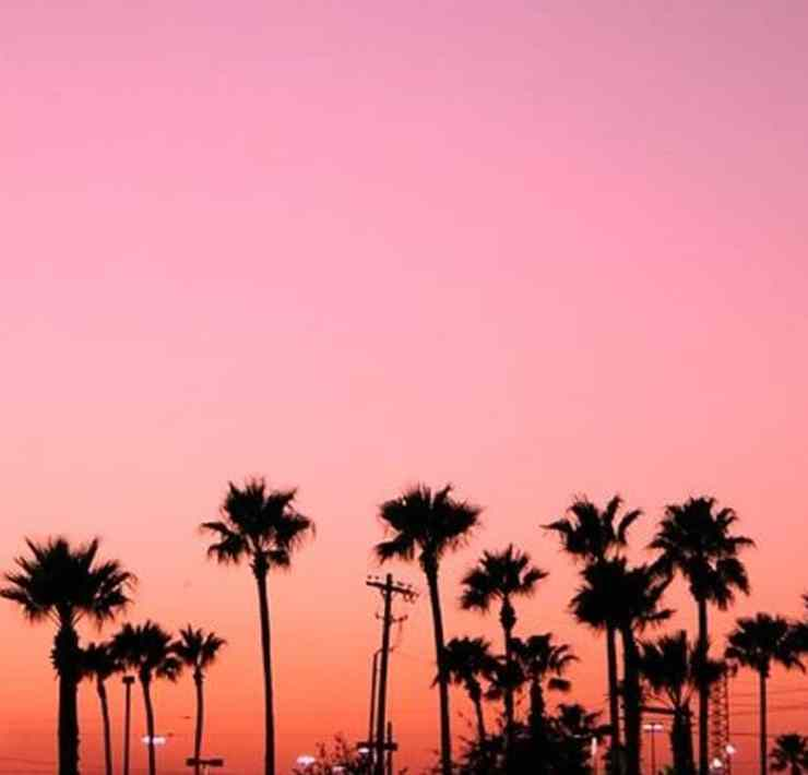 Take a look at these signs you grew up in California! If you were born and raised here, you will not be disappointed with this list.