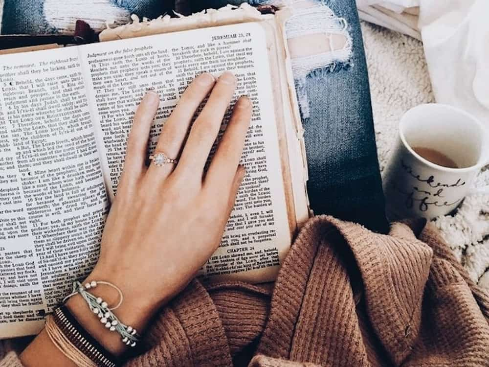 These classic books are the perfect novels to curl up with on a cold winter night. Here are some of our favorite classic novels!