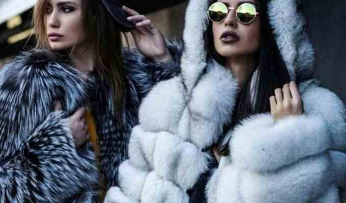 Looking for furry additions to your wardrobe. Check out my top ten animal inspired picks! There's a fur jacket for everyone in this list.