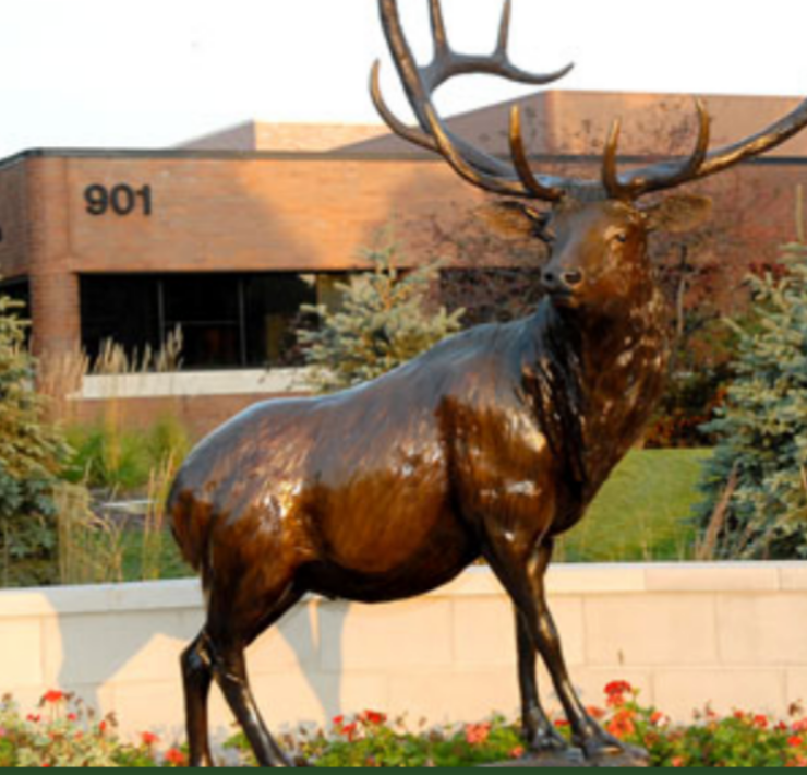 5 Must Go Places In Elk Grove Village
