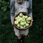 How To Use All Of Those Apples You Picked This Fall