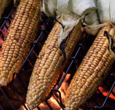 barbecue recipes, Tasty Backyard Barbecue Recipes You Have To Try