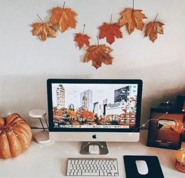 fall decor, 9 Fall Decor Ideas For Your Dorm