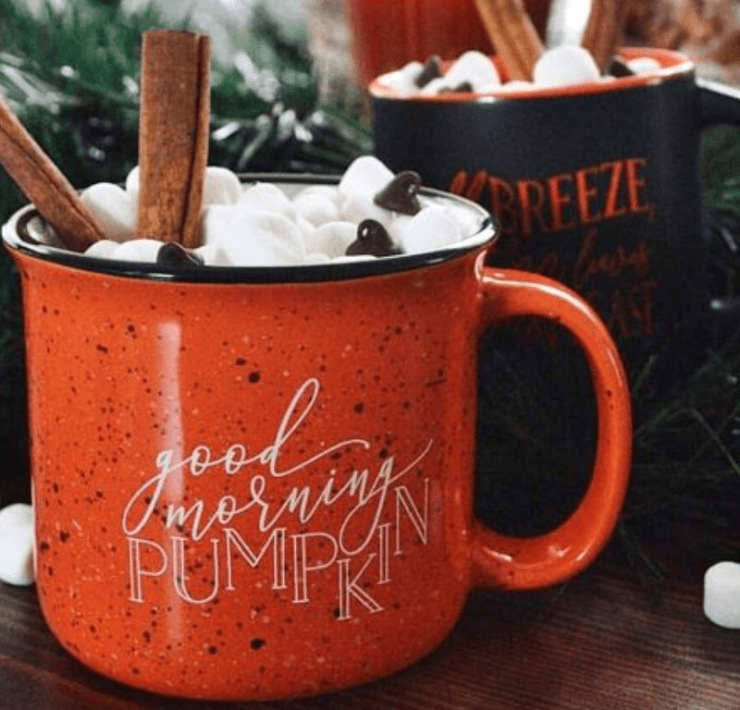 The Best Pumpkin Spice Lattes To Be On The Lookout For This Season