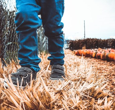 The Best Fall Activities You Can Enjoy With The Family