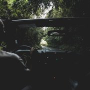 10 Songs Perfect For A Fall Road Trip