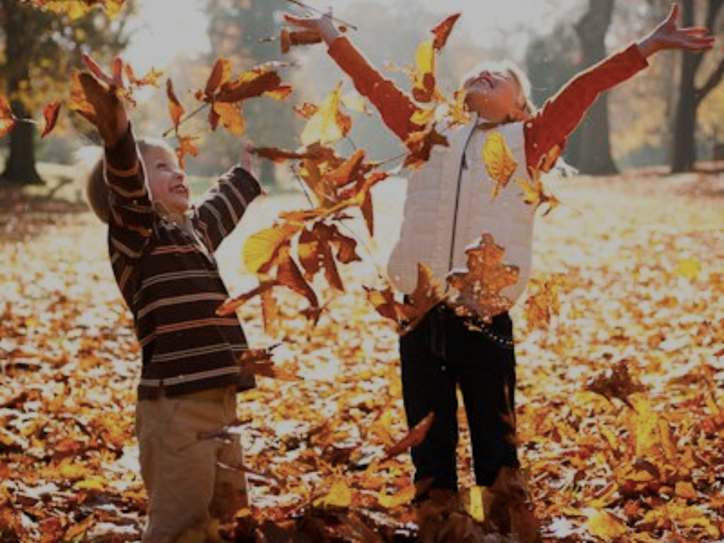 fun fall activities, 8 Fun Fall Activities You'll Have A Blast Doing