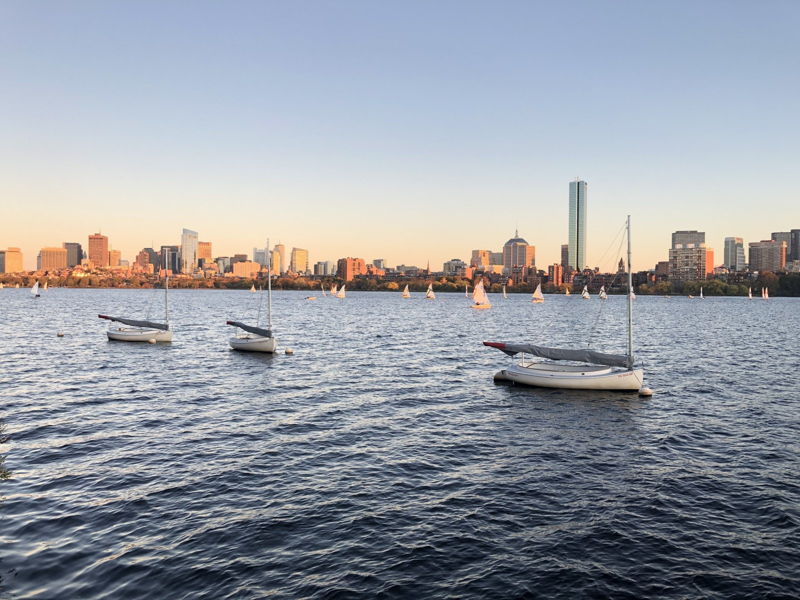 can't miss, 8 Events In Boston You Can't Miss Out On