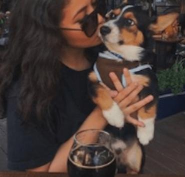 San Francisco, 10 Bars That Are Dog Friendly In San Francisco
